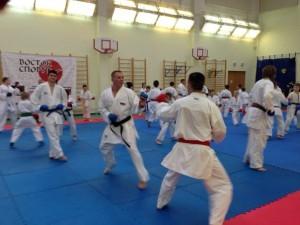 Учебно-тренировочный семинар по спортивному каратэ